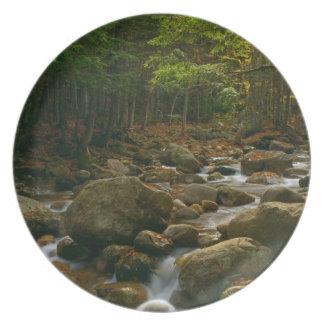 Forest Cascade Plate