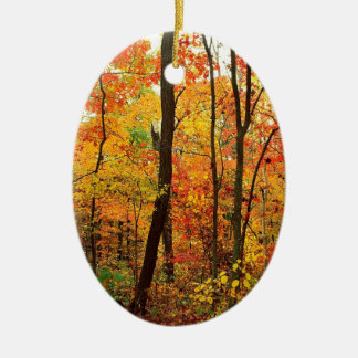 Forest Crimson Appalachian Mountains Ceramic Oval Ornament