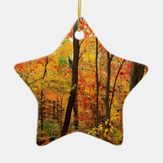 Forest Crimson Appalachian Mountains Ceramic Star Ornament