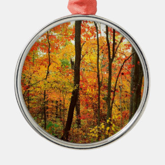 Forest Crimson Appalachian Mountains Silver-Colored Round Ornament