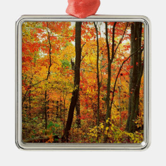 Forest Crimson Appalachian Mountains Silver-Colored Square Ornament