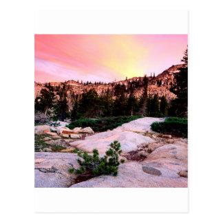 Forest Desolation Wilderness Eldorado Postcard