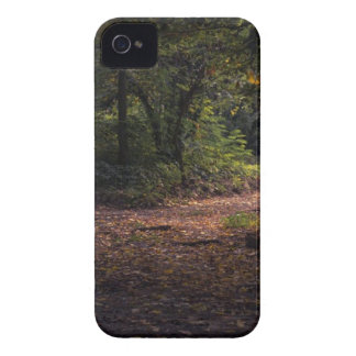 Forest during Daytime iPhone 4 Case
