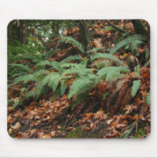 Forest Ferns & Leaves Mousepad