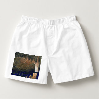 Forest floating on water reservoir boxers