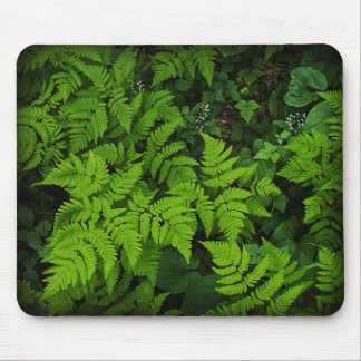 Forest Floor Mousepad