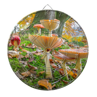 Forest floor with fly agarics and leaves in fall dartboard