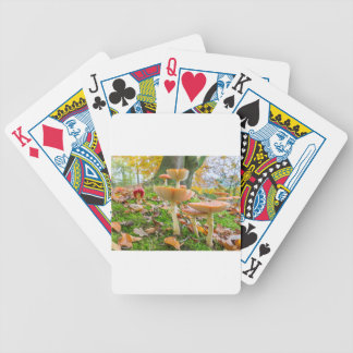 Forest floor with fly agarics and leaves in fall poker deck