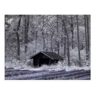 Forest Hut Postcard