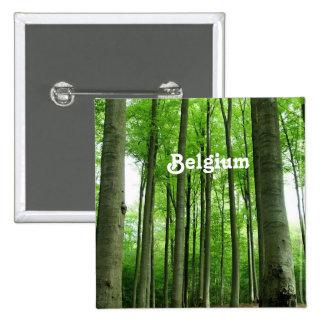 Forest in Belgium Pin