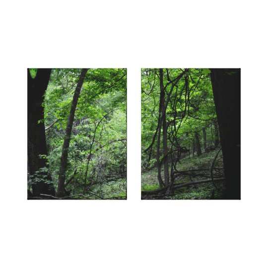 Forest in Springtime Canvas Print