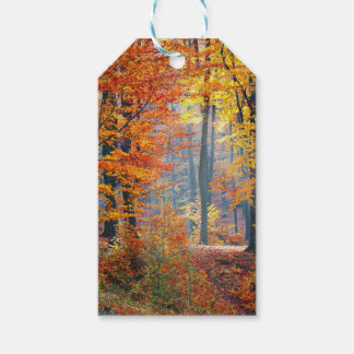 Forest in the Fall Gift Tags