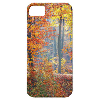 Forest in the Fall iPhone 5 Covers