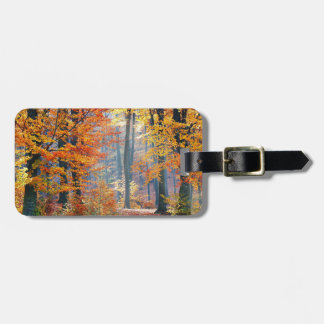 Forest in the Fall Luggage Tag