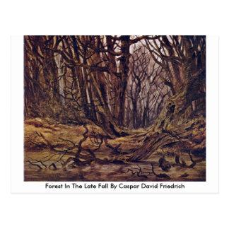Forest In The Late Fall By Caspar David Friedrich Postcard