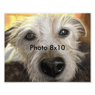 Forest Jack Russel Photo Art