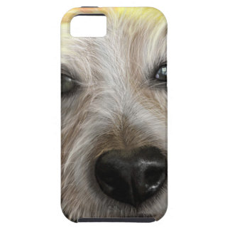 Forest  Jack Russell dog Case For The iPhone 5