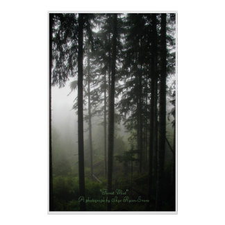 """FOREST MIST"" Wilderness Forest Photo Print"