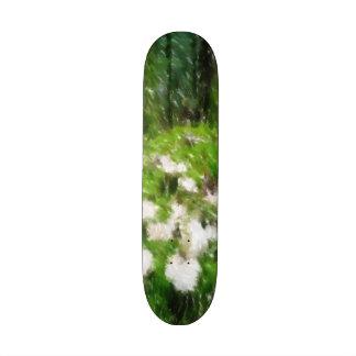 Forest mushroom edited photo skate deck