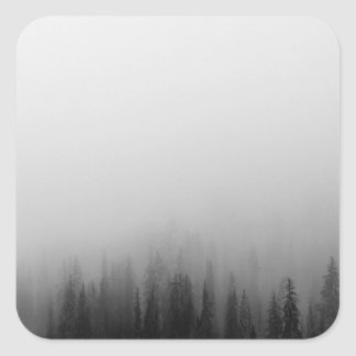 Forest Nature Landscape Scene Foggy Mystical Square Sticker