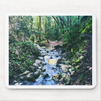 Forest of Nisene Mouse Pad