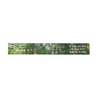 Forest of Palm Trees Tropical Green Wrap Around Label