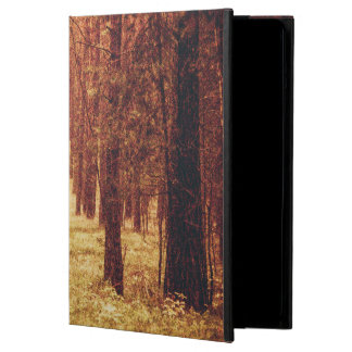 Forest Path... Case For iPad Air