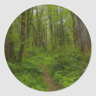 FOREST PATH Nature Scene Stickers