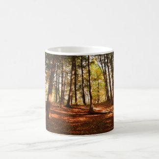 Forest photo Mug
