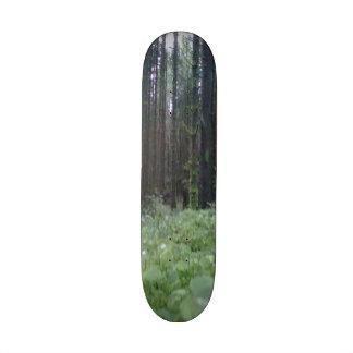Forest photo skateboard deck