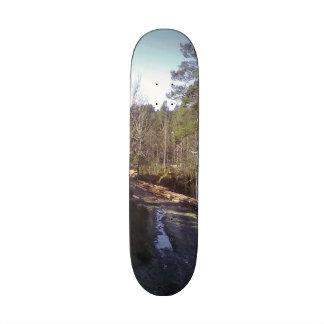 Forest photo custom skate board