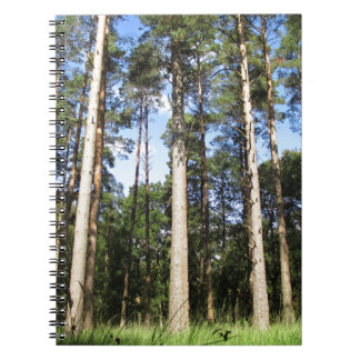 Forest Pines Note Books