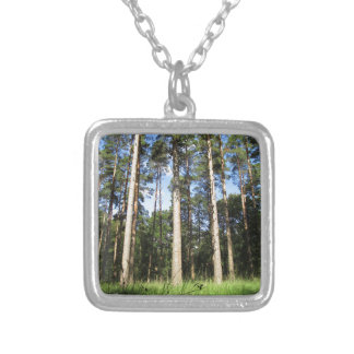Forest Pines Silver Plated Necklace