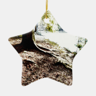 Forest Pond Ceramic Star Ornament