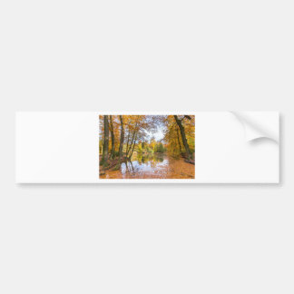 Forest pond covered with leaves in winter season bumper sticker
