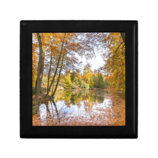 Forest pond covered with leaves in winter season gift box