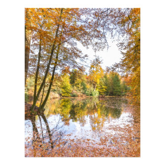 Forest pond covered with leaves in winter season letterhead