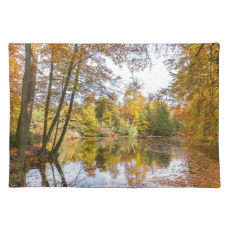 Forest pond covered with leaves in winter season placemat