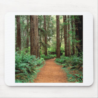 Forest Prairie Redwoods Park Mouse Pad