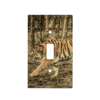 Forest predator wildlife Majestic Wild Tiger Light Switch Cover
