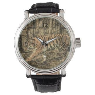 Forest predator wildlife Majestic Wild Tiger Watch