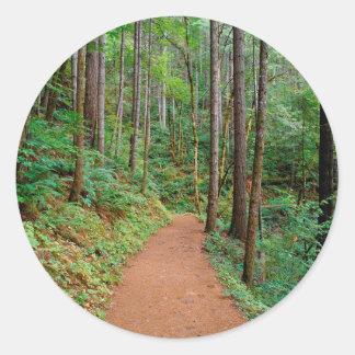 Forest Quiet Trail Columbia River Gorge Round Sticker