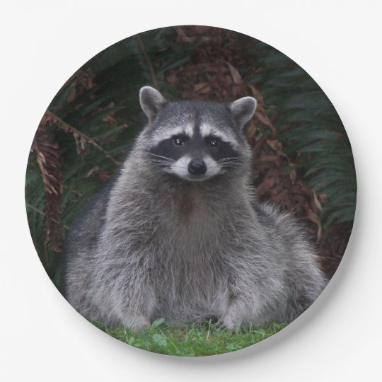 Forest Raccoon Photo 9 Inch Paper Plate