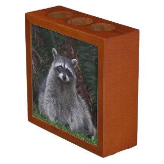 Forest Raccoon Photo Desk Organizer