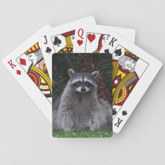Forest Raccoon Photo Poker Deck