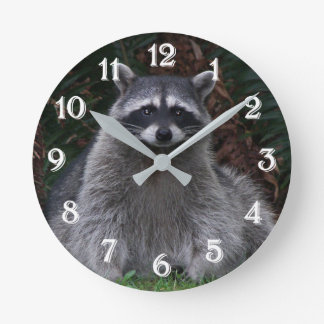 Forest Raccoon Photo Round Clock
