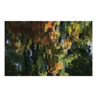 Forest Reflection In Water Poster