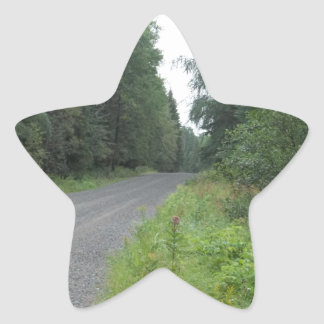 Forest Road Star Sticker