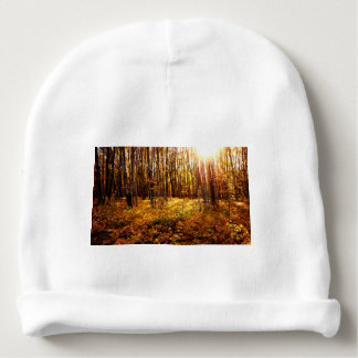 Forest Sunset in the fall Maple Bush Baby Beanie