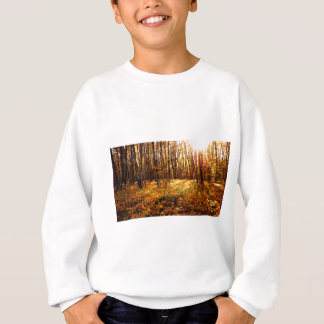 Forest Sunset in the fall Maple Bush Sweatshirt